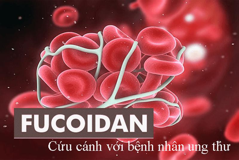 Fucoidan như một cứu cánh cho bệnh nhân ung thư