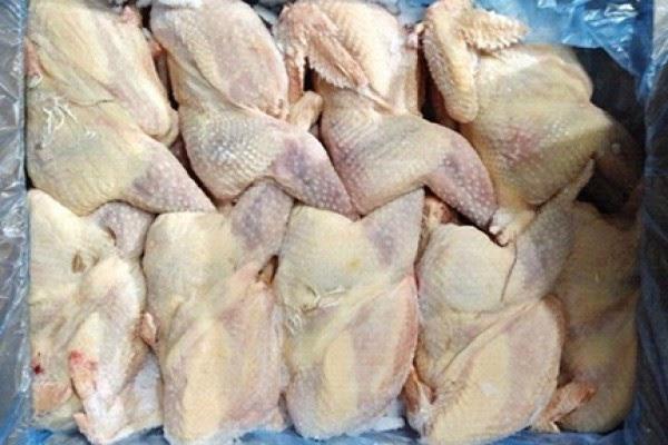 Khám phá tường tận thực hư lời đồn về chất lượng thịt gà đông lạnh (2)